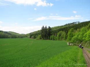 2013-05_Halle-Harz (7 von 8)