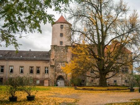 2013-11_Saale-Unstrut_2 (5 von 7)