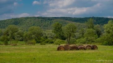 schöne Landschaft im Norden Ungarns