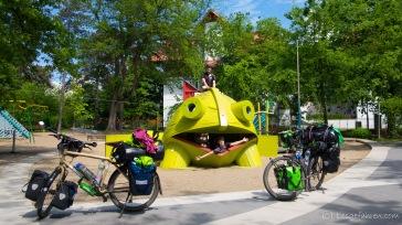 Monsterfrosch - Debrecen