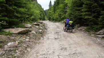 je höher wir kommen, umso schlechter wird der Weg (Querung des Lotrului- und Cindrel-Gebirges)