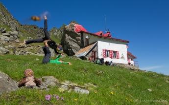 Frühsport mit Summsebrumm - an der Salvamonthütte, Transfagarasan