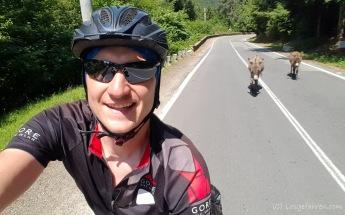 Wenn wir zu langsam werden, kommen die Esel und schieben - Lacul Vidraru, Transfagarasan