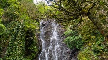 Dschungel-Wasserfall in Mirveti