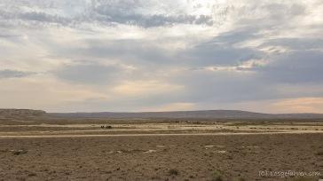 Zeltplatz in der Wüste bei Qobustan. ein faszinierender Ort.
