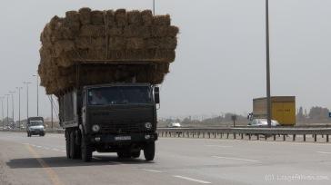 Transport von Waren und Gütern - Höher und Breiter geht immer