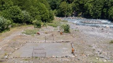 Es gibt hier so viele Kühe, dass man ihnen eigens einen Fußballplatz gebaut hat.
