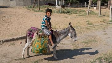 Junge mit seinem Esel
