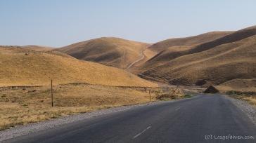 Unsere Straße durchs hügelige Steppenland