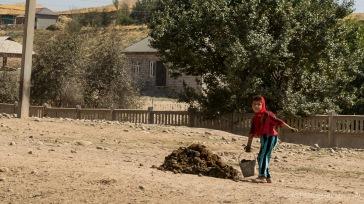Kuhdung wird als wichtigster Brennstoff überall im Land gesammelt und getrocknet