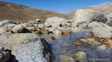 Die Nächte werden kälter. Nicht selten ist morgens schon eine dünne Eisschicht an den Bachrändern auszumachen.