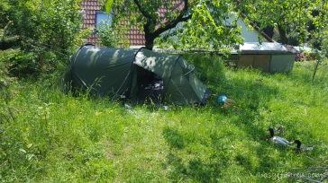 Zelten mit Laufenten
